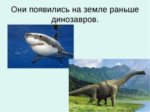 Они появились на земле раньше динозавров.