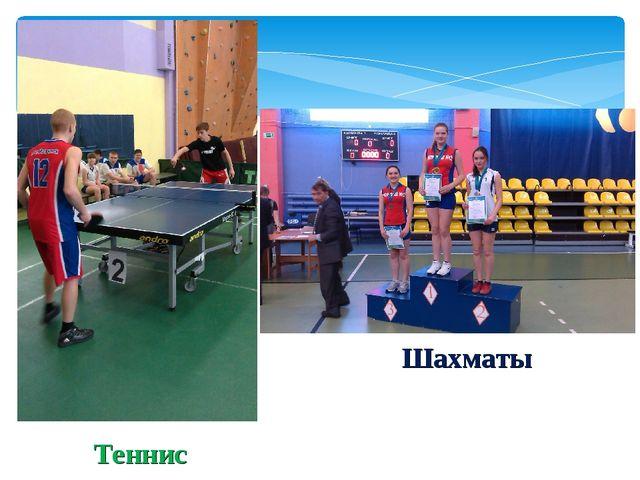 Теннис Шахматы