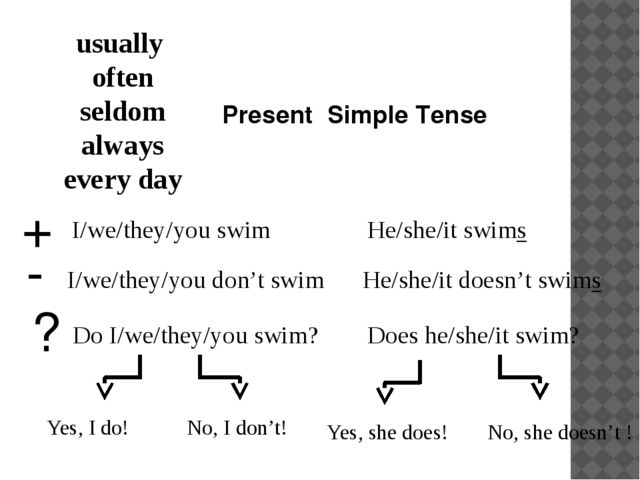 Present Simple Tense usually often seldom always every day I/we/they/you swim...