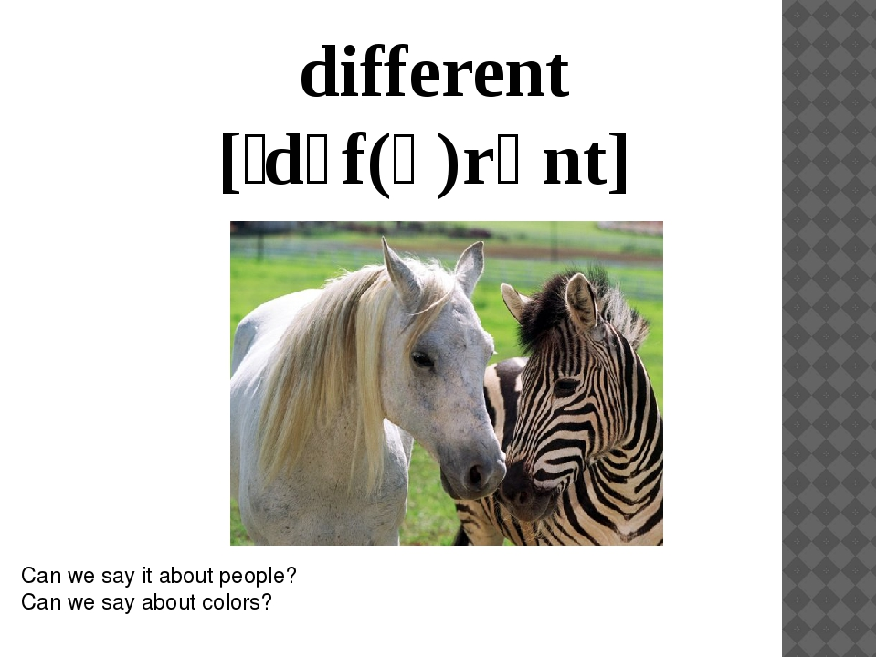 different [ˈdɪf(ə)rənt] Can we say it about people? Can we say about colors?