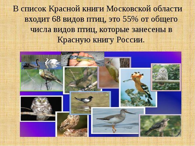 В список Красной книги Московской области входит 68 видов птиц, это 55% от об...