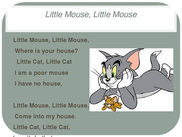 Little Mouse, Little Mouse Little Mouse, Little Mouse, Where is your house? L...