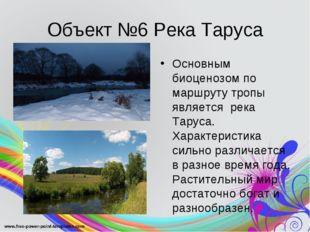 Объект №6 Река Таруса Основным биоценозом по маршруту тропы является река Тар