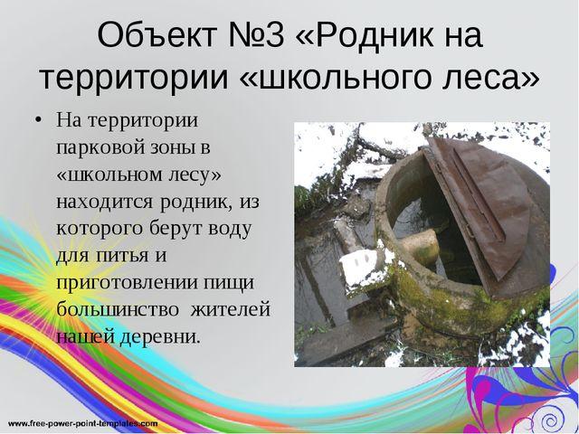 Объект №3 «Родник на территории «школьного леса» На территории парковой зоны...