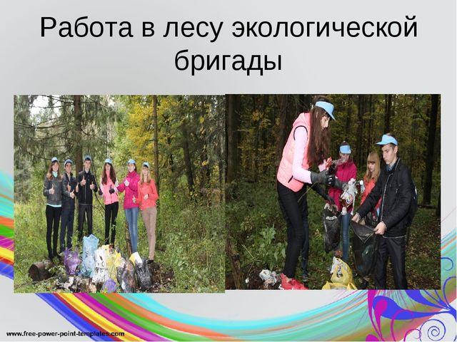 Работа в лесу экологической бригады