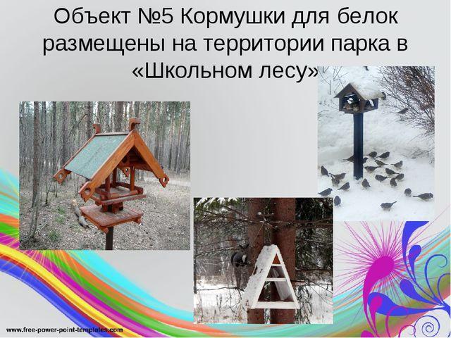 Объект №5 Кормушки для белок размещены на территории парка в «Школьном лесу»