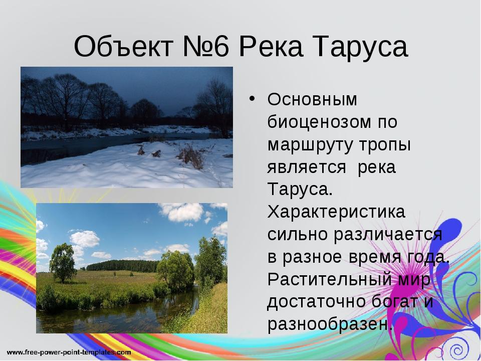 Объект №6 Река Таруса Основным биоценозом по маршруту тропы является река Тар...