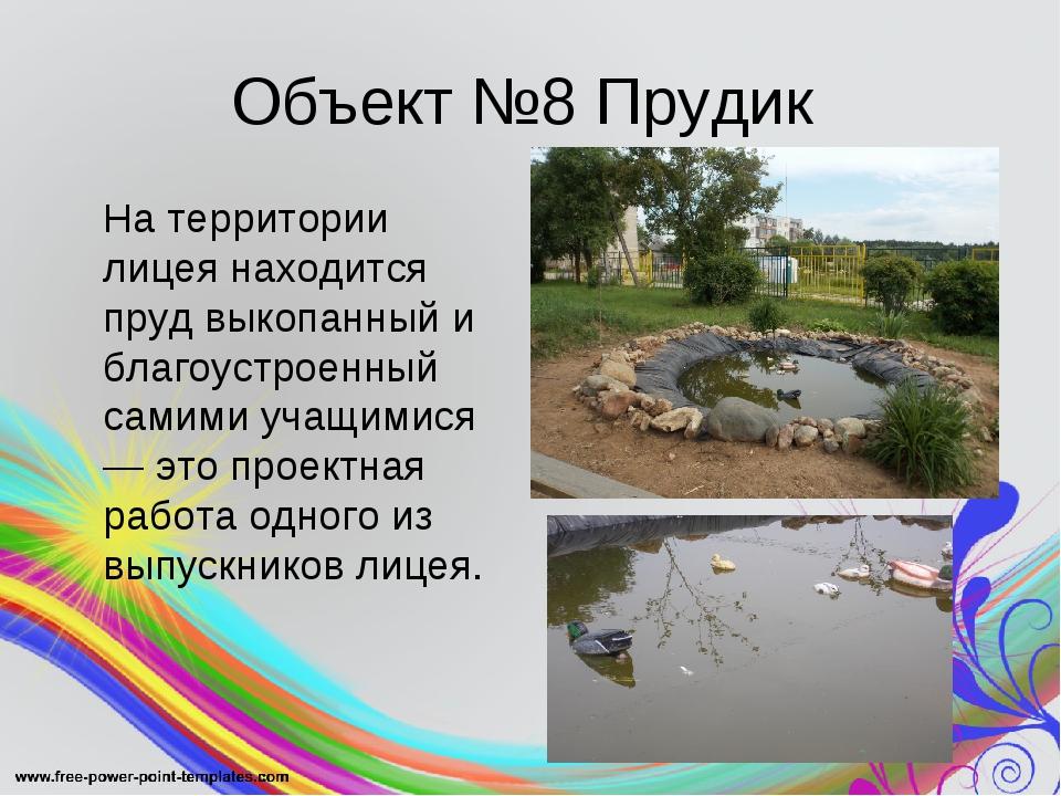 Объект №8 Прудик На территории лицея находится пруд выкопанный и благоустрое...