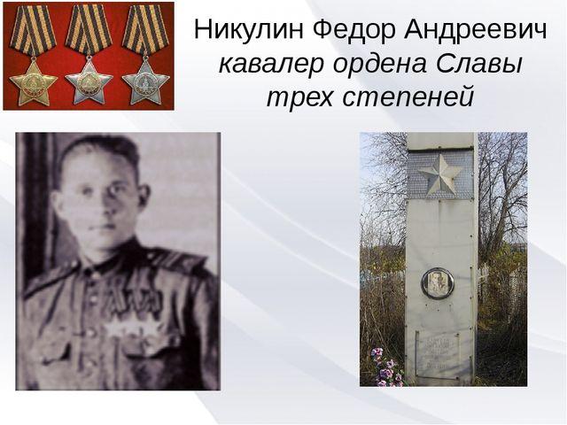 Никулин Федор Андреевич кавалер ордена Славы трех степеней