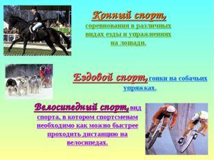 Конный спорт, соревнования в различных видах езды и упражнениях на лошади. Ез