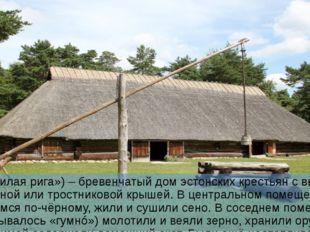 Рига Рига («жилая рига») – бревенчатый дом эстонских крестьян с высокой солом