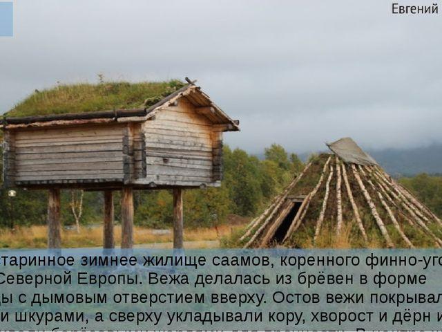 Вежа Вежа – старинное зимнее жилище саамов, коренного финно-угорского народа...