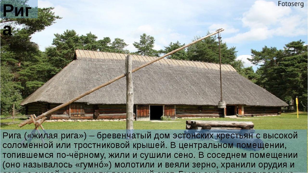 Рига Рига («жилая рига») – бревенчатый дом эстонских крестьян с высокой солом...
