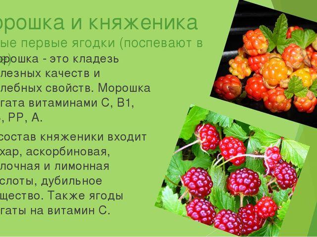 Морошка и княженика Самые первые ягодки (поспевают в июле) Морошка - это клад...