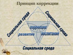 Принцип коррекции