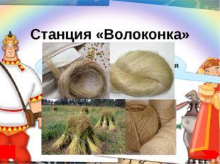 Использованные ресурсы http://videouroki.net/filecom.php?fileid=98675911 ОМС-