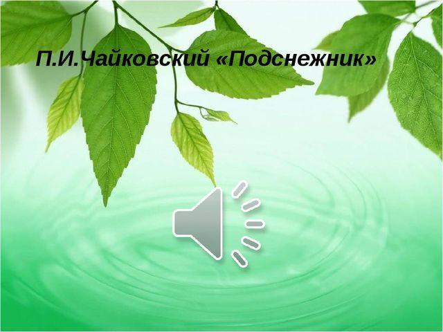 П.И.Чайковский «Подснежник»
