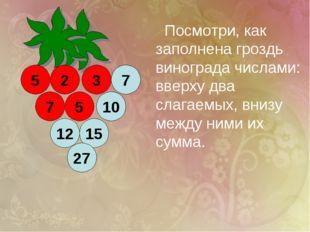 2 12 15 5 5 10 27 7 3 7 Посмотри, как заполнена гроздь винограда числами: вве