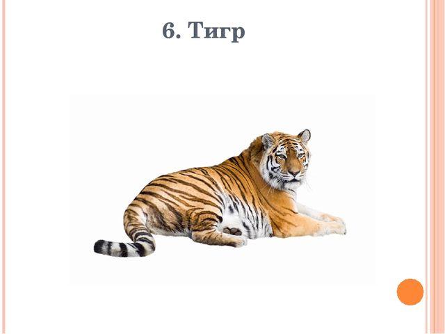6. Тигр