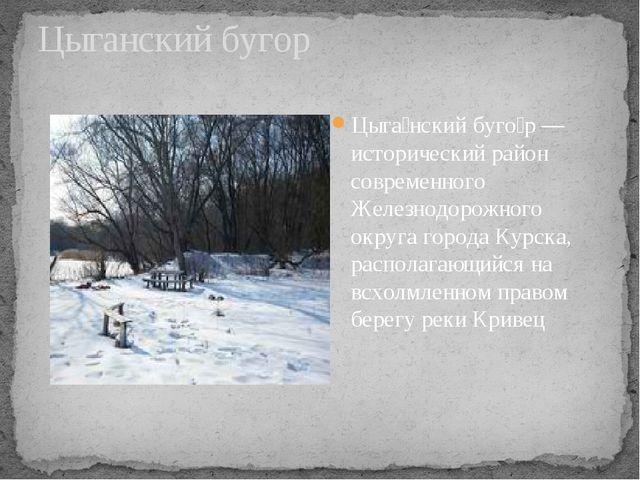 Цыганский бугор Цыга́нский буго́р — исторический район современного Железнодо...
