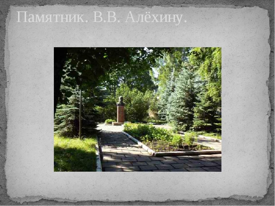 Памятник. В.В. Алёхину.