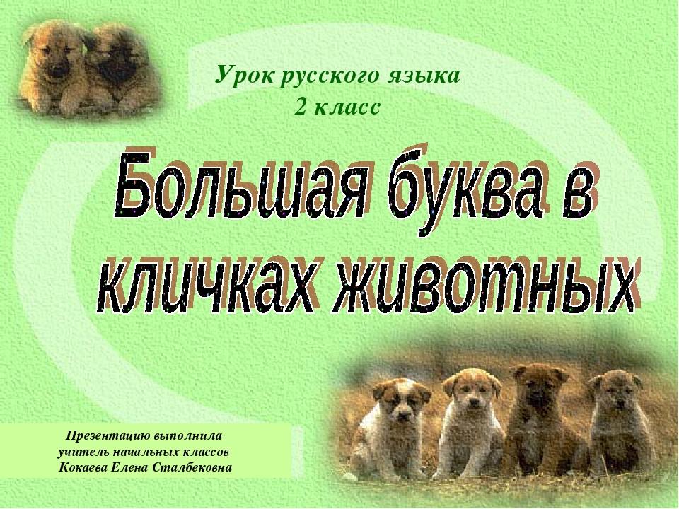 Урок русского языка 2 класс Презентацию выполнила учитель начальных классов К...