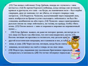 (11) Так воевал лейтенант Егор Дрёмов, покуда не случилось с ним несчастье.