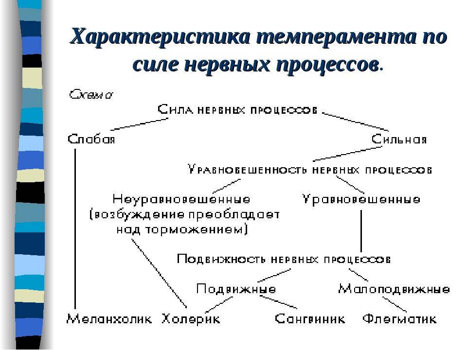 Характеристика темперамента по силе нервных процессов.