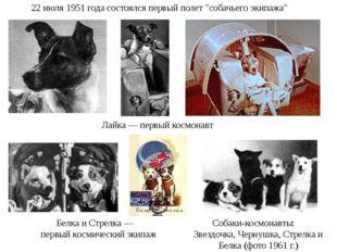 """22 июля 1951 года состоялся первый полет """"собачьего экипажа"""" Лайка — первый к"""