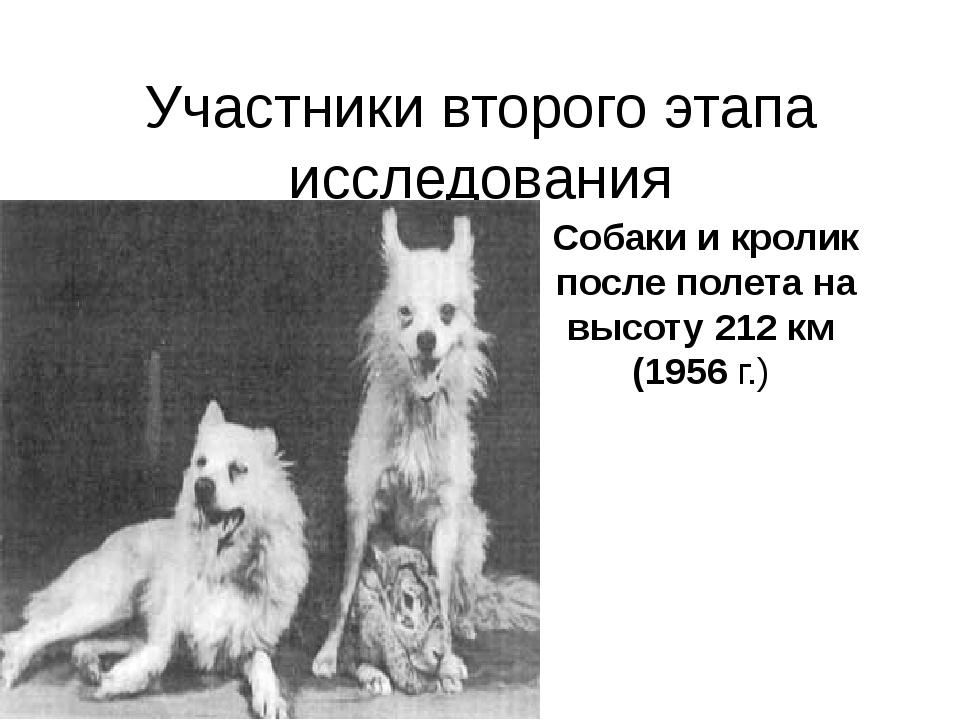 Участники второго этапа исследования Собаки и кролик после полета на высоту 2...