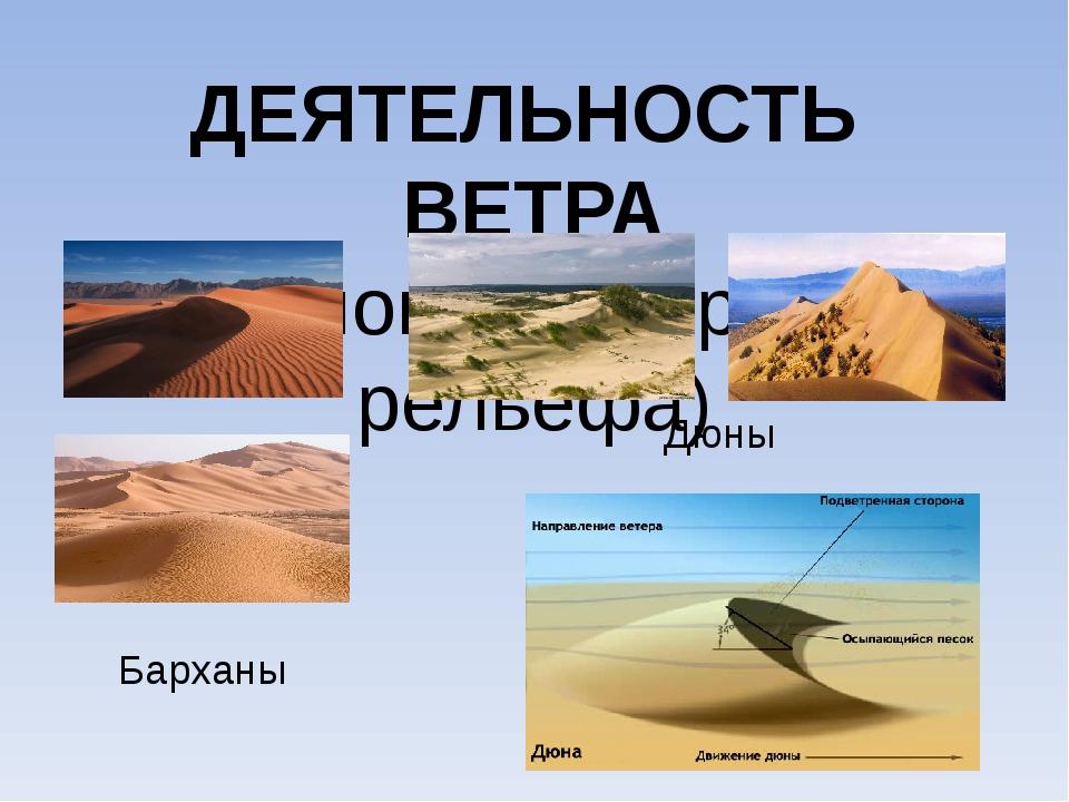 ДЕЯТЕЛЬНОСТЬ ВЕТРА (эоловые формы рельефа) Барханы Дюны