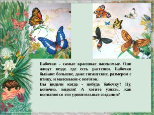 Бабочки – самые красивые насекомые. Они живут везде, где есть растения. Бабо