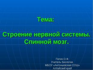 Тема: Строение нервной системы. Спинной мозг. Пигин О.Ф. Учитель биологии МБО