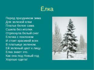 Ёлка Перед праздником зима Для зеленой елки Платье белое сама Сшила без иголк