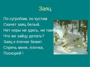 Заяц По сугробам, по кустам Скачет заяц белый, Нет норы ни здесь, ни там! Что
