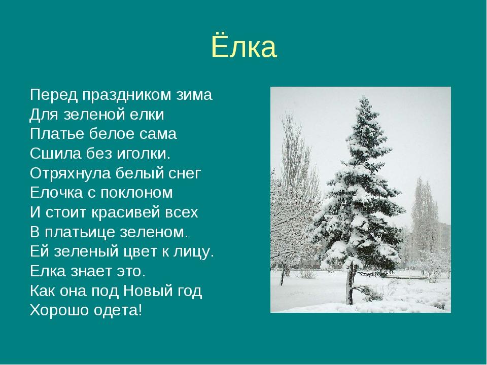Перед праздником зима для зелёной ёлки платье белое сама сшила без иголки
