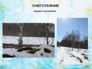 СНЕГОТАЯНИЕ Освобождение от снега приствольных кругов
