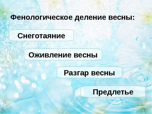Фенологическое деление весны: Снеготаяние Оживление весны Разгар весны Предле...