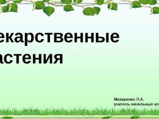Лекарственные растения Макаренко Л.А. учитель начальных классов