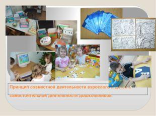 Принцип совместной деятельности взрослого и детей и самостоятельной деятельно