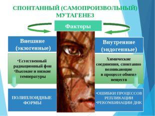 Факторы Внешние (экзогенные) Внутренние (эндогенные) Естественный радиационны
