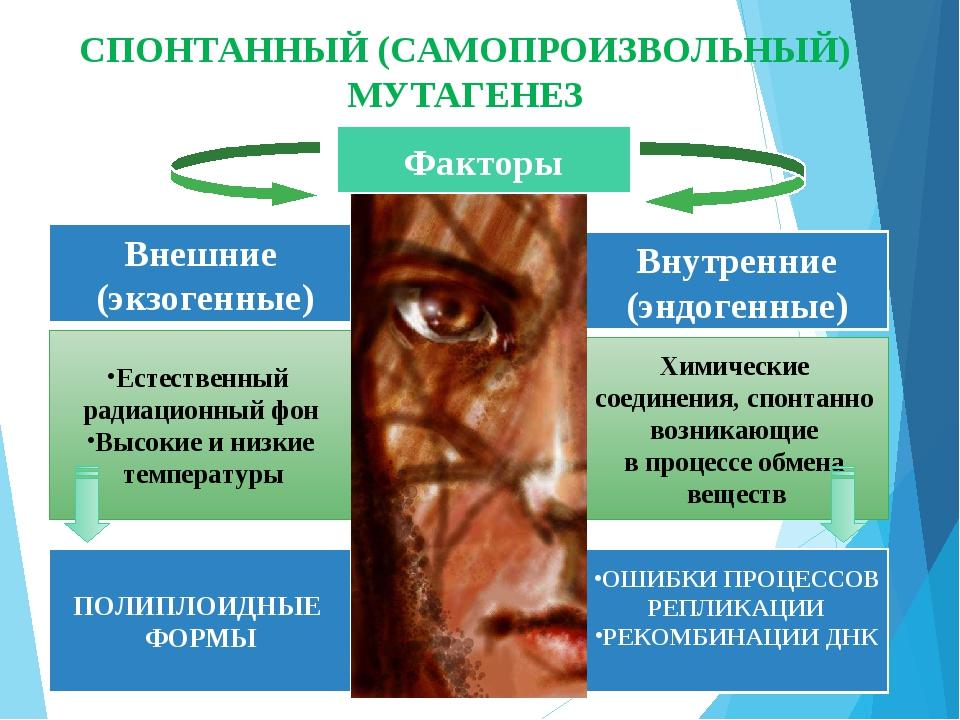 Факторы Внешние (экзогенные) Внутренние (эндогенные) Естественный радиационны...