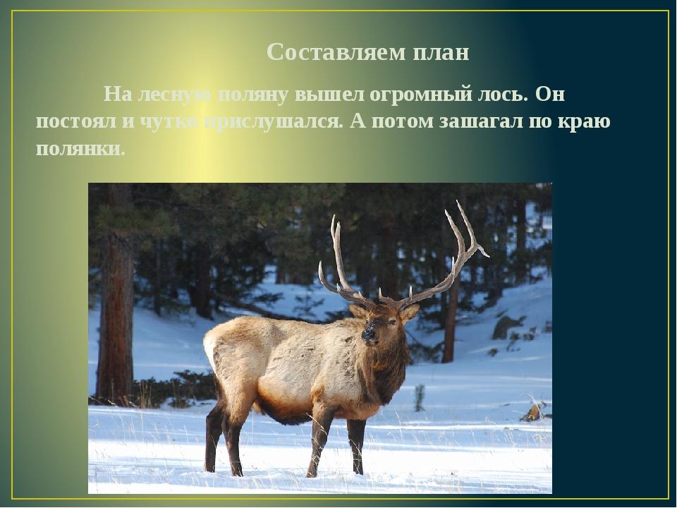 Составляем план На лесную поляну вышел огромный лось. Он постоял и чутко...