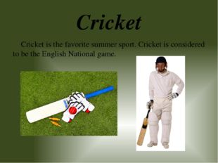 Cricket Cricket is the favorite summer sport. Cricket is considered to be the