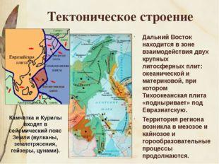 Тектоническое строение Дальний Восток находится в зоне взаимодействия двух кр