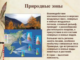 Природные зоны Взаимодействие континентальных и морских воздушных масс, север