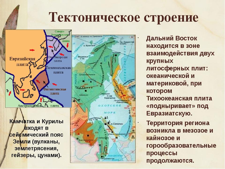 Тектоническое строение Дальний Восток находится в зоне взаимодействия двух кр...