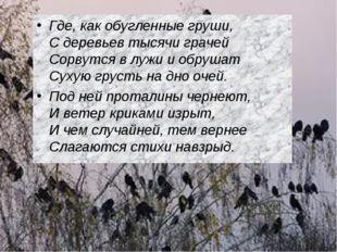 Где, как обугленные груши, С деревьев тысячи грачей Сорвутся в лужи и обр