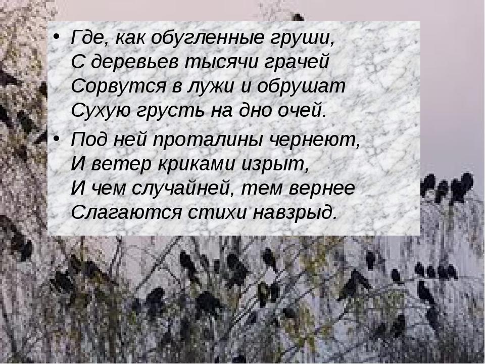 Где, как обугленные груши, С деревьев тысячи грачей Сорвутся в лужи и обр...