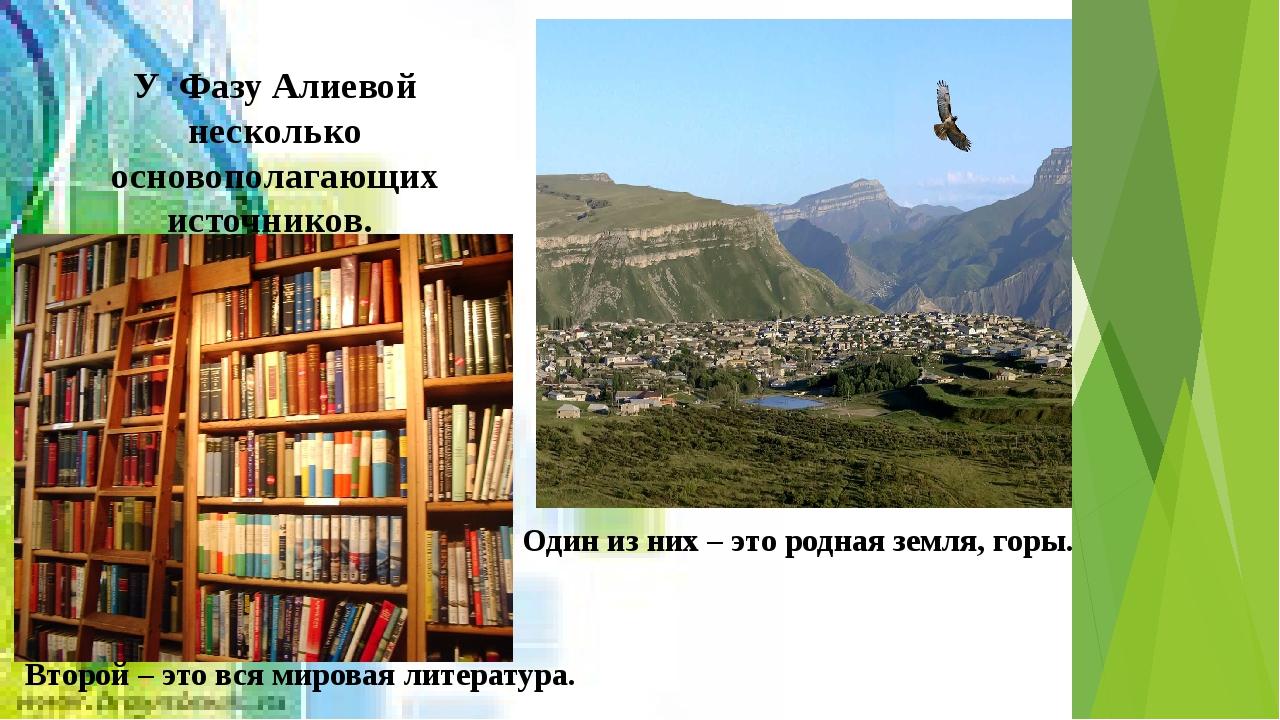 У Фазу Алиевой несколько основополагающих источников. Один из них – это родна...